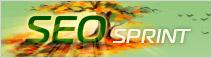 Биржа сёрфинга в интернете Seosprint.ru