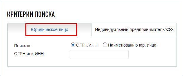 Критерии поиска по сайту Налоговой службы