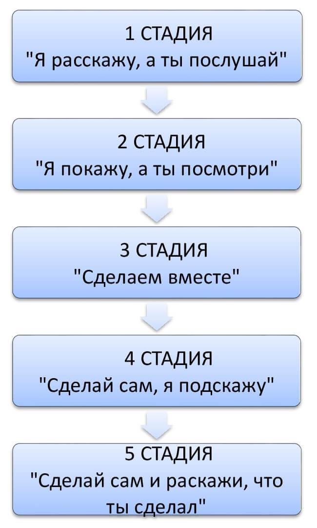 Схема_Наставничество (2)