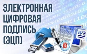 Электронная цифровая подпись_мини