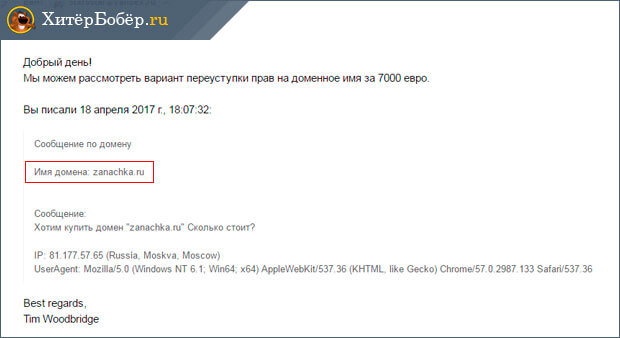 Скриншот ответа на запрос о покупке домена