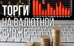 Торги на валютной бирже_мини