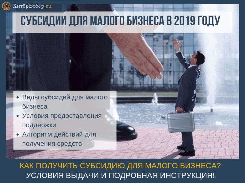 Субсидии для малого бизнеса в 2019 году: как получить поддержку на открытие и развитие своего дела