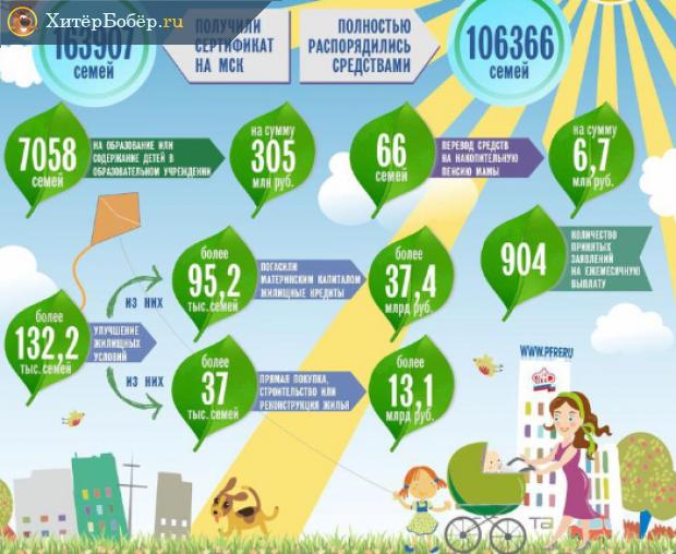 Инфографика, как распорядились материнским капиталом его получатели в Алтайском крае