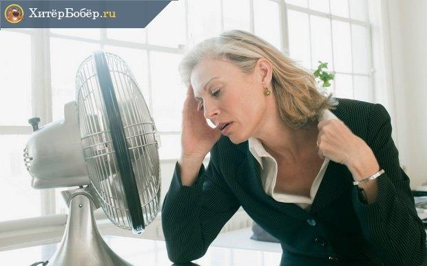 Высокая температура воздуха — испытание для организма