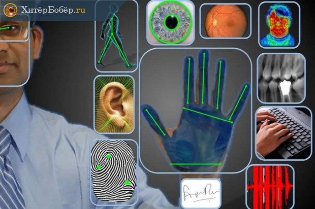 Биометрические показатели
